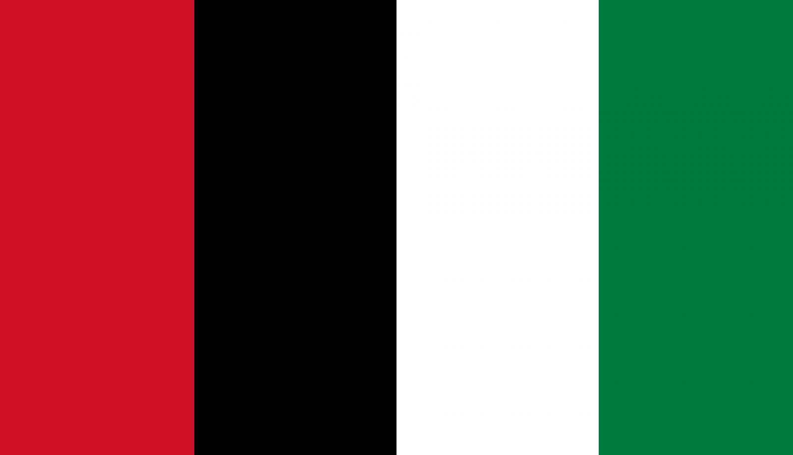 Couleurs du drapeau palestinien